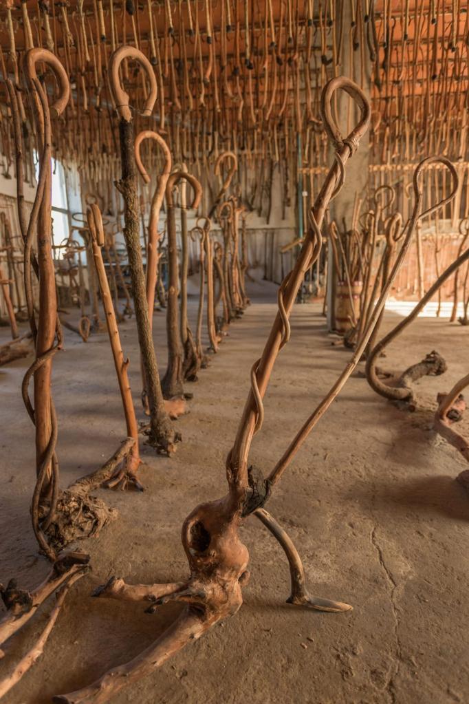 Museo de La Cachaba