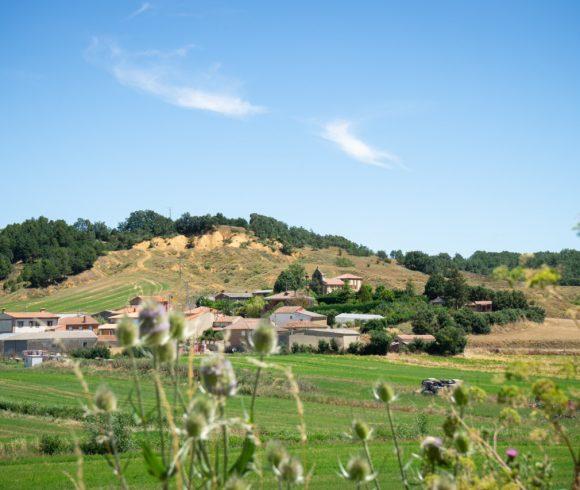 Villanueva del Monte